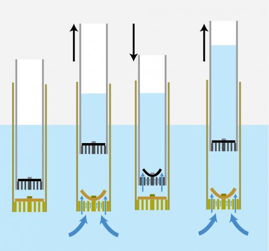 Canzee pump mechanism diagram