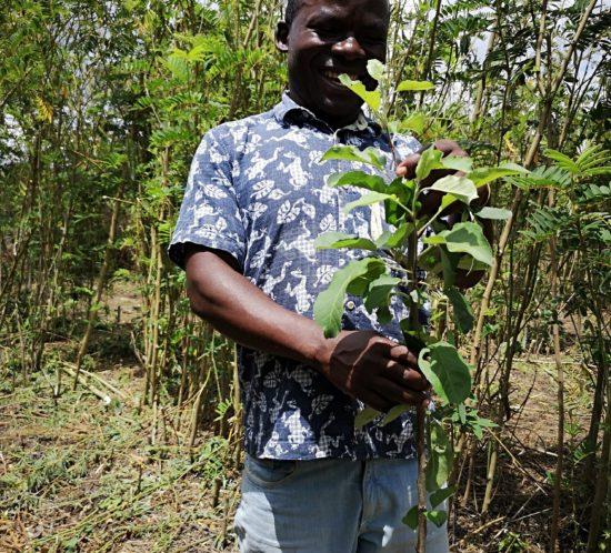 Adamson Chirwa – Apple Man