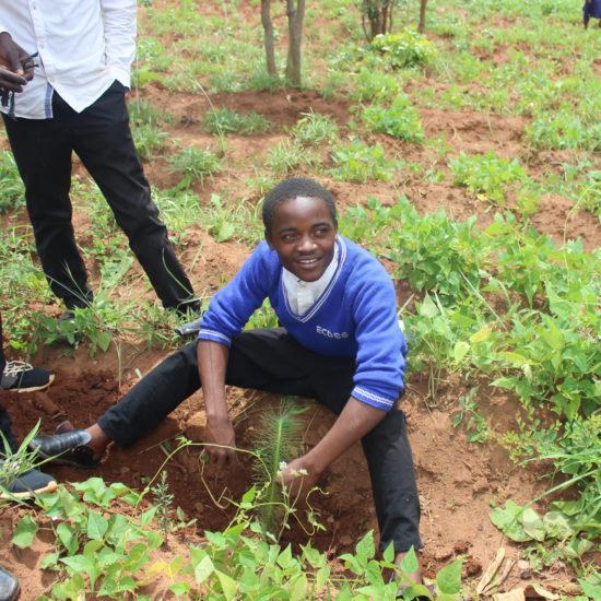 Boy Student planting