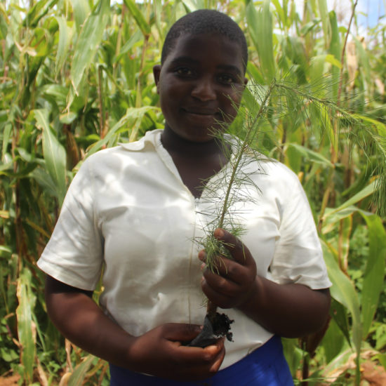 Enyezini Girl Student planting tree