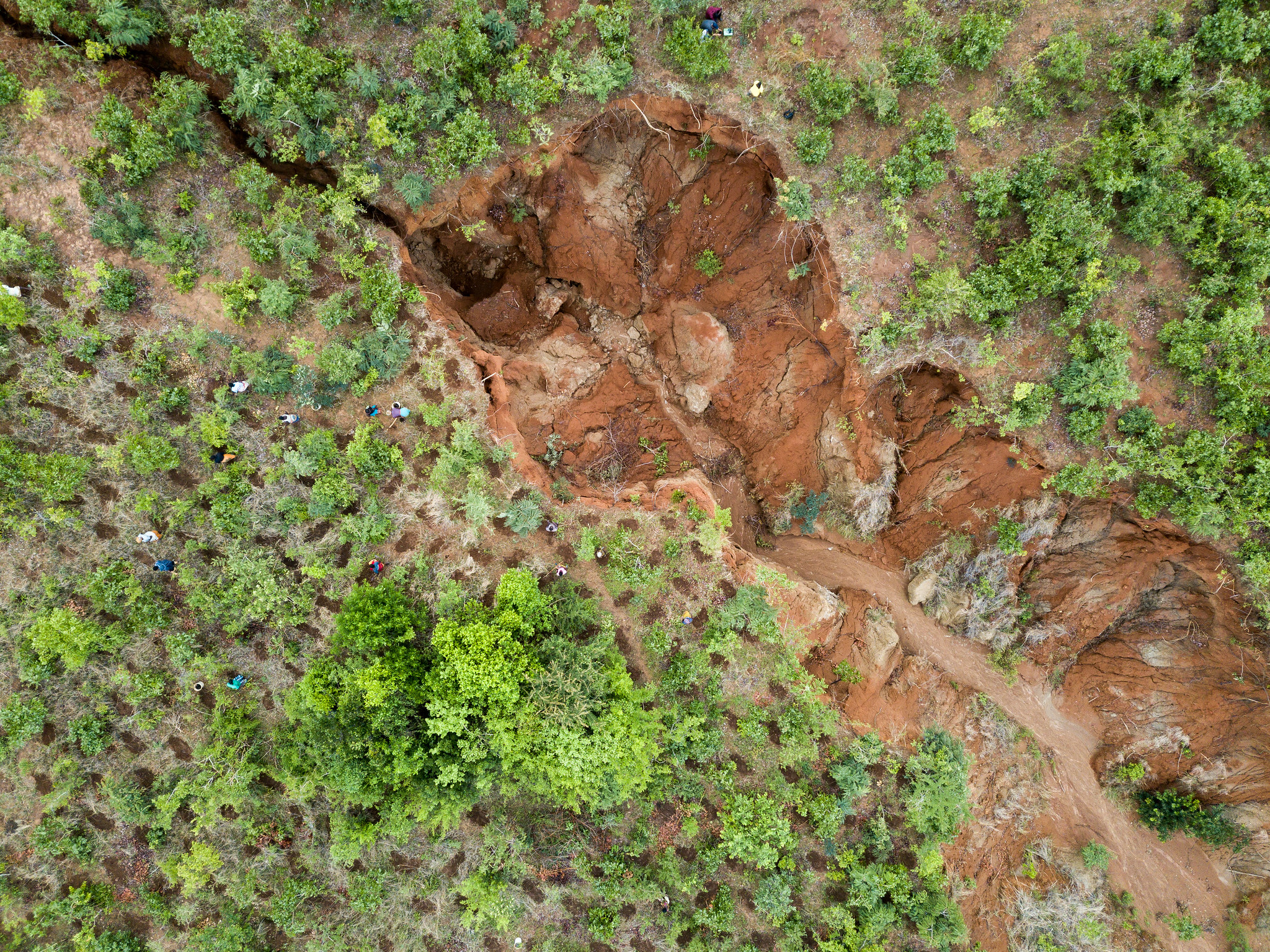 Enyezini aerial gully & planting holes