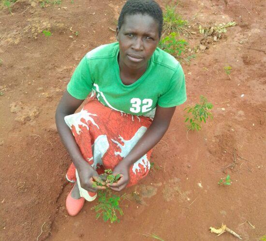 Esnart Chiposa, Enyezini indigenous tree planter