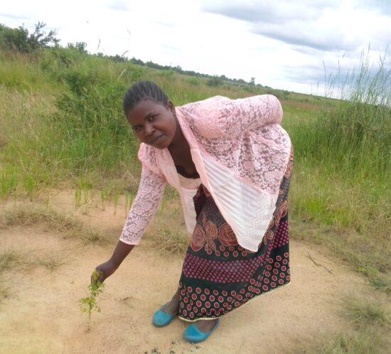 Eunice Phiri Kasera planter