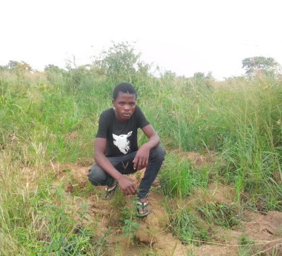 Koniwel Nelson planter Kasera