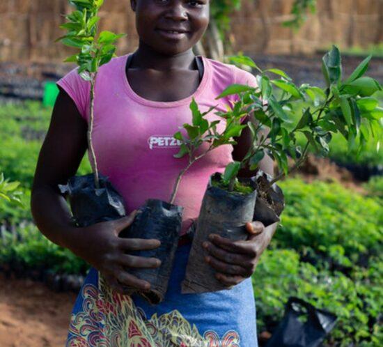 Rozina Mwale Enyezini planter