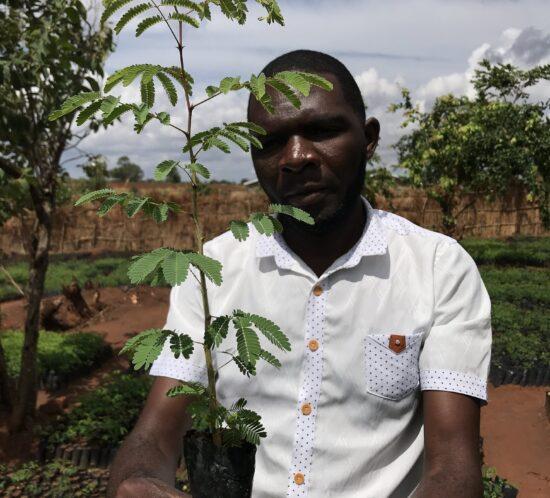 Lovemore with Mthethe (Senegalia Polyacantha) seedling