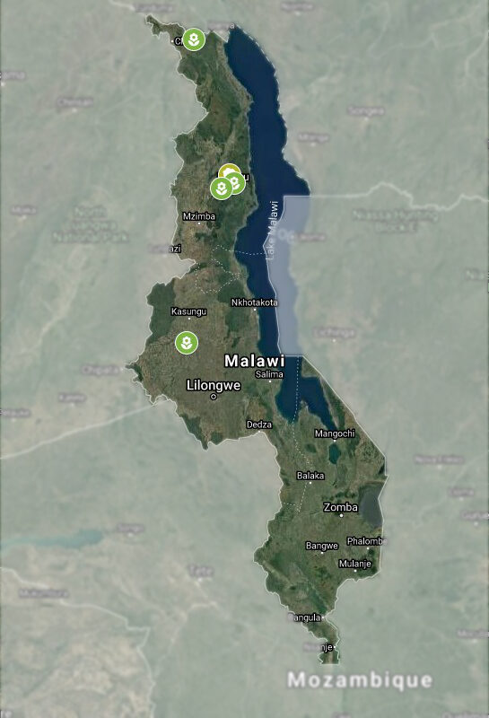 Malawi Map with WfZ Indigenous Tree Seedling Nurseries cutout